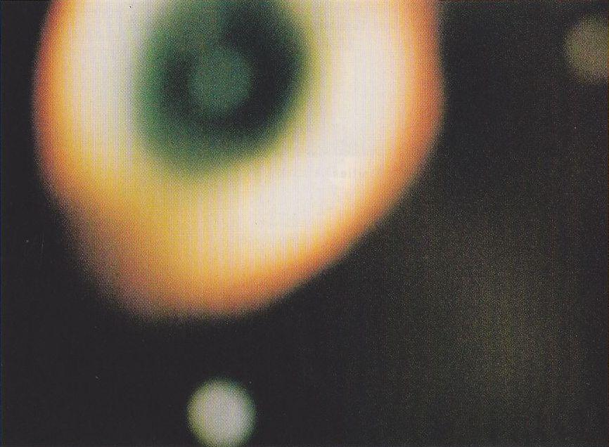 USFD (1991) - photo 69